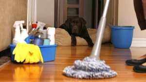 como-limpiar-el-polvo-del-hogar